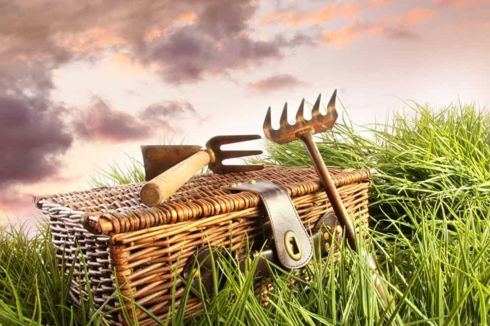 How To Keep Garden Tools Rust Free